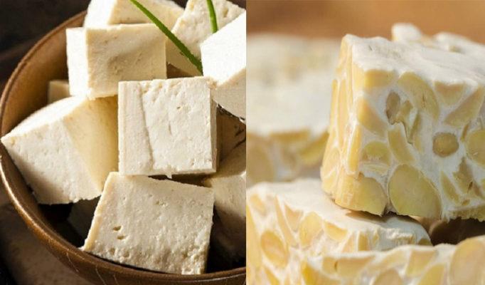 Dalla soia tempeh e tofu per la nostra tavola