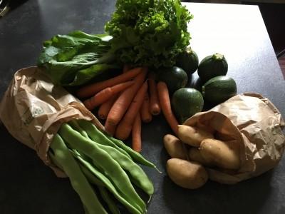 Quanto il buon cibo BIO aiuta la qualità della nostra vita?