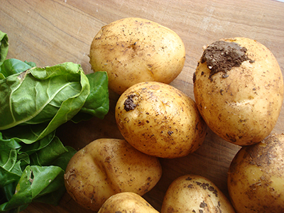Non dimenticate la terra sulle patate!