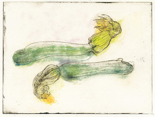 zucchine disegnate sole leggera