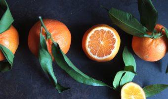 L'inverno inizia a donare i suoi frutti.
