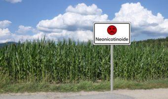 CHIEDIAMOLO ALLE API: Cosa è successo quando i consumatori hanno iniziato a preoccuparsi dei pesticidi nel piatto?